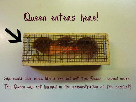 The Queens Travel Box