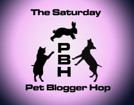 Saturday Pet Blog Hop