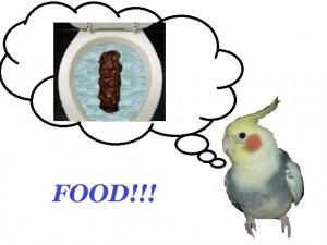 Yummy!  Yummy!
